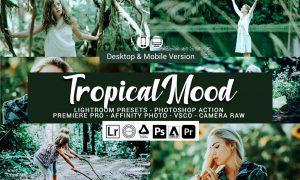 Tropical Mood Presets 5689991