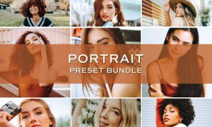 10 Portrait Lightroom Preset Bundle 5701827