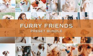 20 Pet Lightroom Preset Bundle 5701819