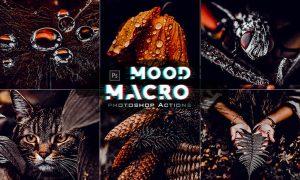 Macro Moody Photoshop Actions 66GK7JH