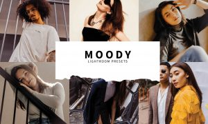 10 Moody Lightroom Presets 5857396