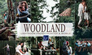 10 Woodland Mobile & Lightroom 5900247