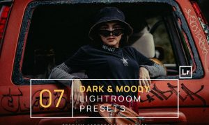 7 Dark & Moody Lightroom Presets + Mobile