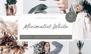 12 Lightroom Preset Minimalist White 5962580