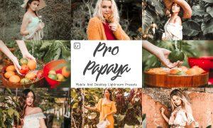 14 Pro Papaya Mobile & Lightroom 5958044