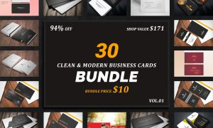 30 Business Cards Bundle 3297958