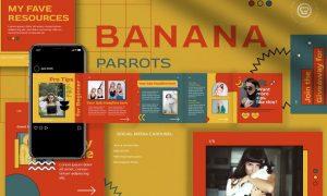 Banana Parrots Instagram Carousel QVLJ8XJ