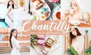 Chantilly Mobile & Desktop Lightroom Presets