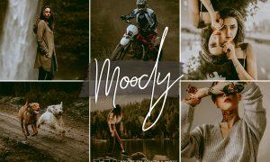 Dark & Moody Lightroom Presets 5832653