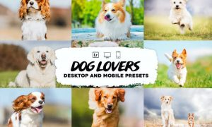 Dog Lovers Lightroom Presets Collection