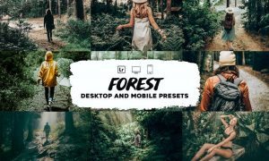 Forest Lightroom Presets