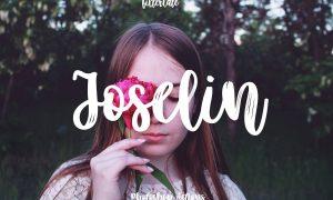 Joselin 4842352