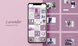 Lavender Instagram Post EVQQN94