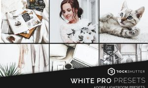WHITE PRO Mobile & Desktop Presets 5963310
