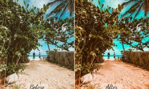10 Pro Hawaii Mobile And Lightroom 6035609