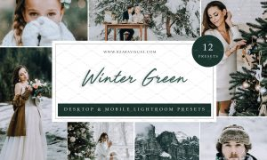 12 x Lightroom Presets, Winter Green 5962772