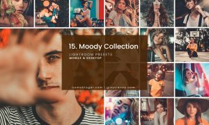 15. Moody Collection - LRMC1
