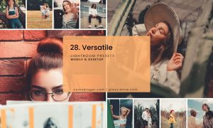 28. Versatile Preset