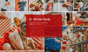 31. Winter Reds
