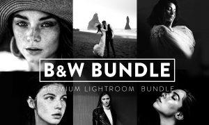 60 BLACK and WHITE Bundle Lightroom 6043136