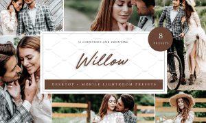 8 x Lightroom Presets, Willow 5962712