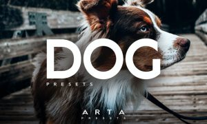 ARTA Dogs Presets For Mobile and Desktop