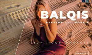 Balqis Desktop and Mobile Lightroom Preset