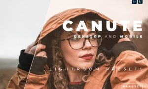 Canute Desktop and Mobile Lightroom Preset