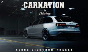 Carnation Adobe Lightroom Preset 5992399