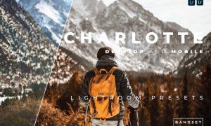 Charlotte Desktop and Mobile Lightroom Preset