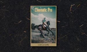 Cinematic Pro Lightroom Preset 6004784