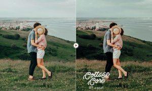 Cottagecore 10 Lifestyle Presets 6079380