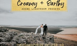 Creamy & Earthy LR Preset Pack 2379921