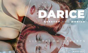 Darice Desktop and Mobile Lightroom Preset