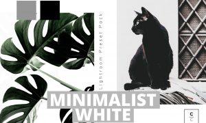 Minimalist White Lightroom Preset 5978148