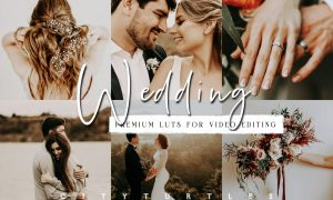 Moody Wedding LUTs for Video Editing 5954073