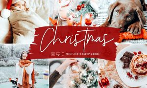 Signature Edits - The Christmas Lightroom Preset Collection