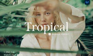 Tropical Lightroom Mobile Preset 5914234