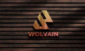 Wall Logo Mockup in Wood N2G262D