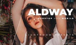 Aldway Desktop and Mobile Lightroom Preset