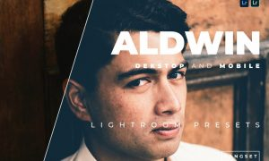 Aldwin Desktop and Mobile Lightroom Preset