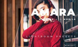 Amara Desktop and Mobile Lightroom Preset