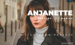 Anjanette Desktop and Mobile Lightroom Preset