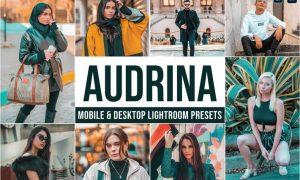 Audrina Mobile and Desktop Lightroom Presets