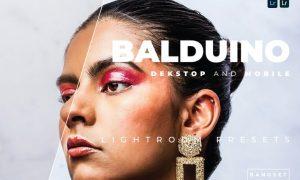 Balduino Desktop and Mobile Lightroom Preset