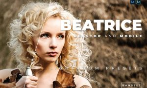Beatrice Desktop and Mobile Lightroom Preset