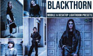 Blackthorn Mobile and Desktop Lightroom Presets