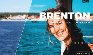 Brenton Desktop and Mobile Lightroom Preset