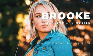 Brooke Desktop and Mobile Lightroom Preset