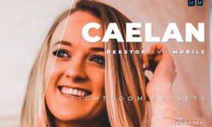 Caelan Desktop and Mobile Lightroom Preset